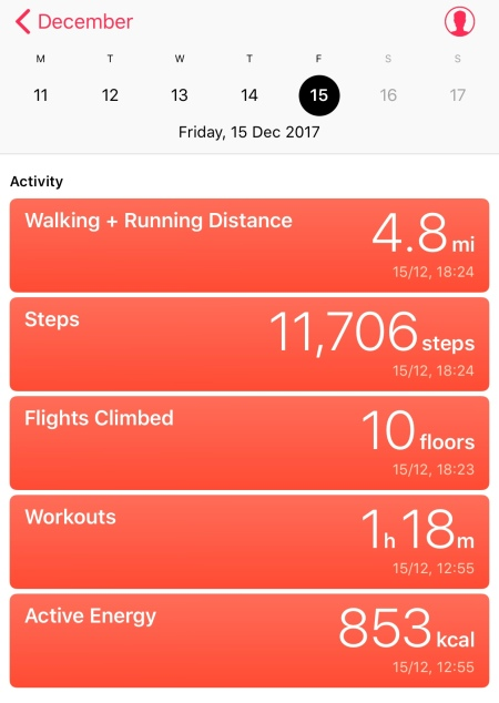 Dec. 15th Workout