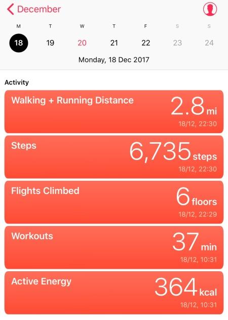 Dec. 18th Workout