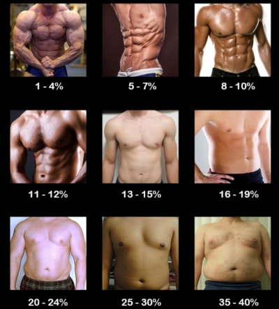 Body Fat Percentage (Multiple Men)