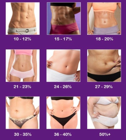 Body Fat Percentage (Multiple Women)