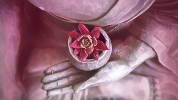 Zen Content (4)